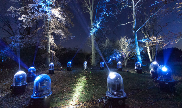 The Tree Lights at Morton Arboretum, in Lisle, shine daily from 5-9:30 p.m. through Jan. 2.